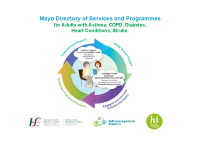 Mayo Directory of Services and Programmes for Adults with Asthma, COPD, Diabetes, Heart Conditions and Stroke front page preview