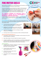 Paediatric Occupational Therapy: Fine motor skills front page preview