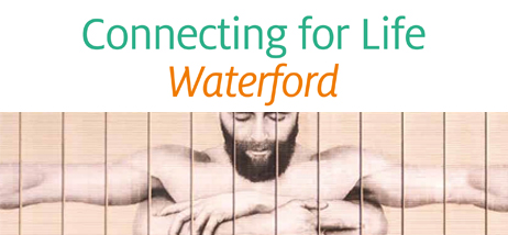 Cfl Waterford Launch Website News Header