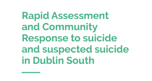 Dublin South Rapid Assessment Report_Cover2