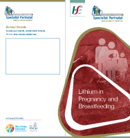 Lithium in Pregnancy and Breastfeeding (printable version) front page preview