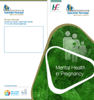 Mental Health in Pregnancy (printable version) front page preview