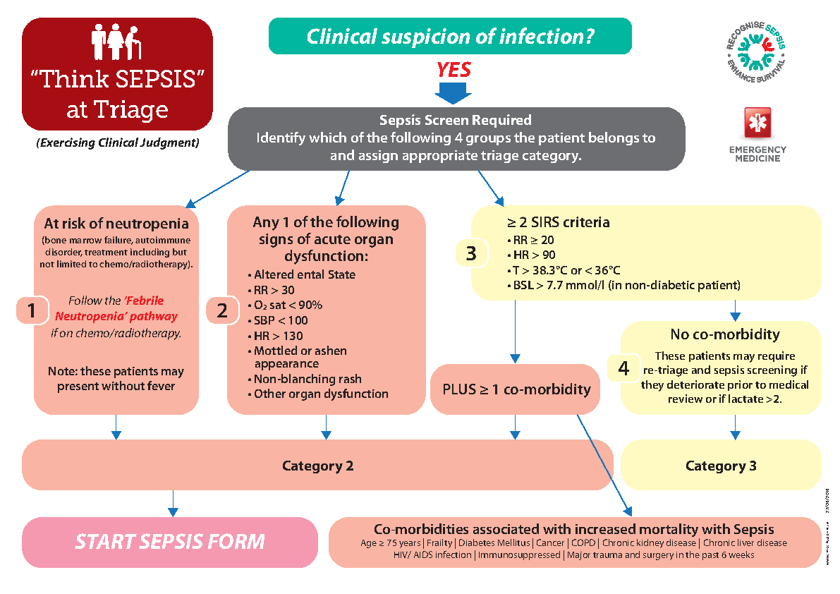 Emergency Department Sepsis Triage Algorithm front page preview image