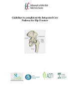 Guidelines to compliment the Integrated Care Pathway for Hip Fracture  front page preview