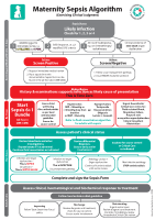 Maternity Sepsis Management Algorithm front page preview