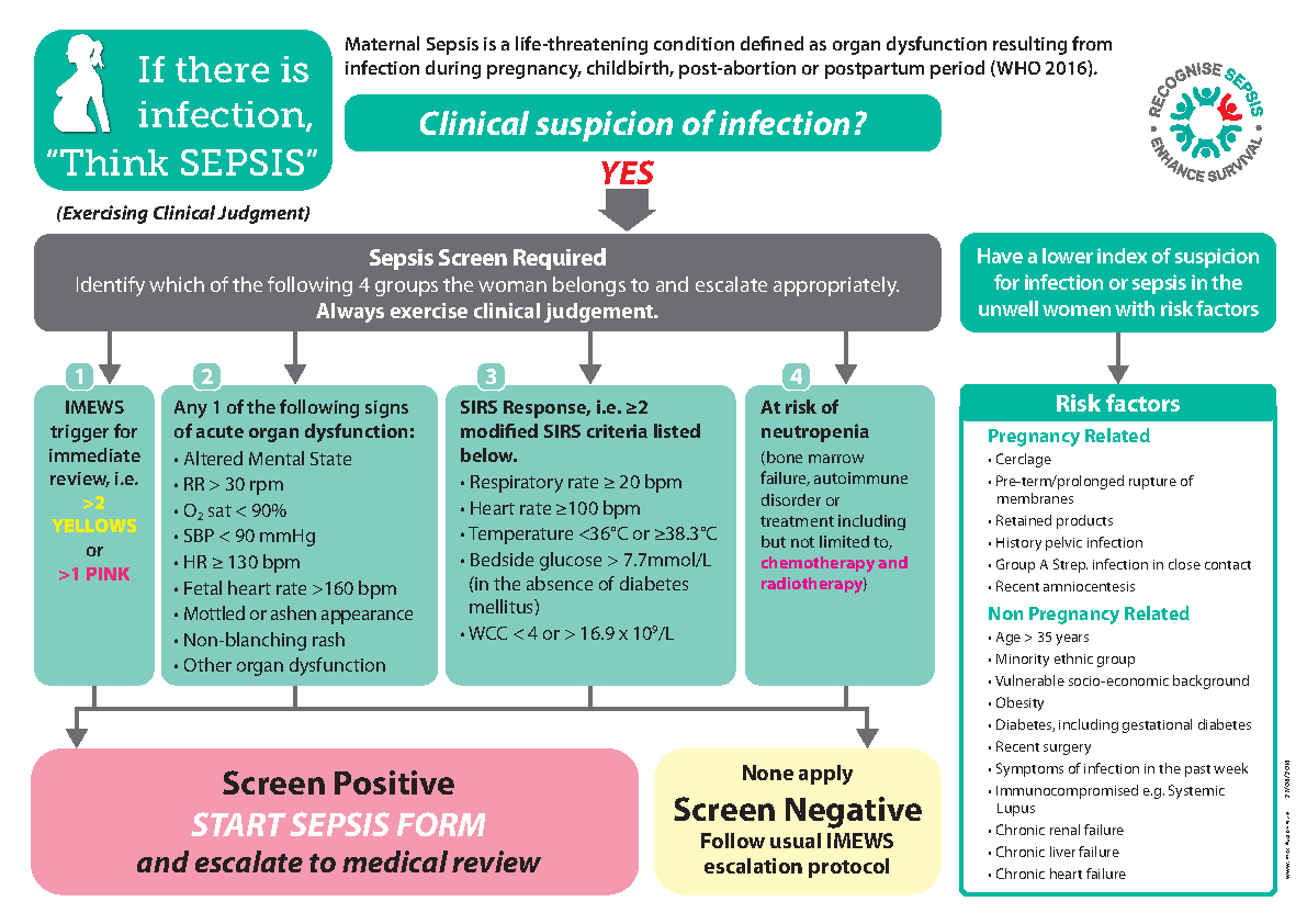Maternity Sepsis Screening Algorithm front page preview image