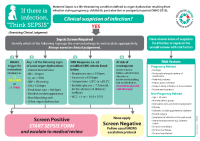 Maternity Sepsis Screening Algorithm front page preview