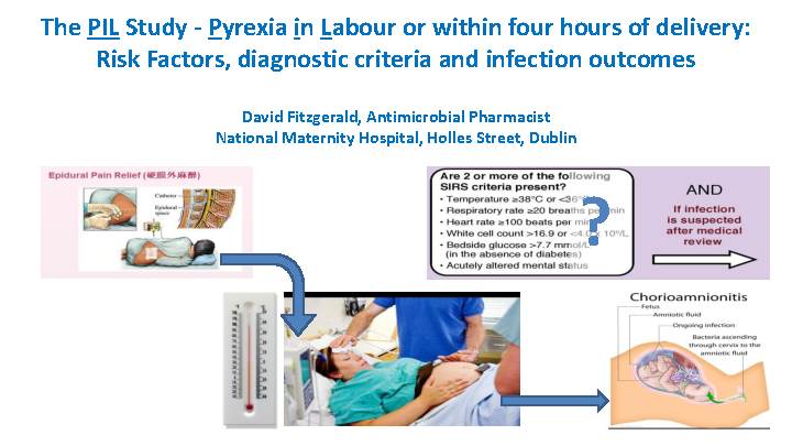 The PIL Study - Pyrexia in Labour or within four hours of delivery front page preview image
