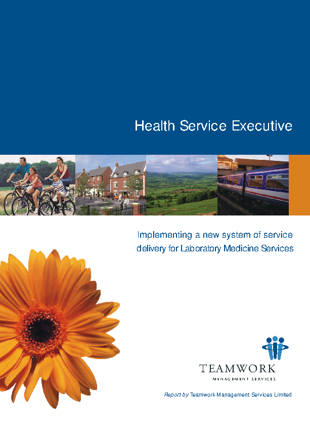 Teamwork report Implementing a new system of service delivery for laboratory medicine services front page preview