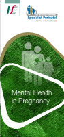 Mental Health in Pregnancy front page preview image