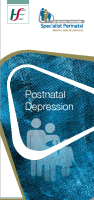 Postnatal Depression front page preview image