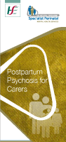 Postpartum Psychosis - information for Carers front page preview image