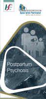 Postpartum Psychosis front page preview image