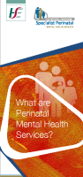 What are Perinatal Mental Health Services front page preview image