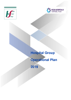 RCSI Hospital Group Operational Plan - Delivery Plan 2019 front page preview image