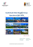 South South West Hospital Group Operational Plan - Delivery Plan 2019 front page preview image