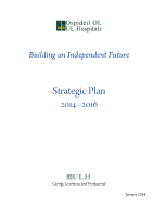 UL Hospitals: Building an Independent Future. Strategic Plan 2014-2016 front page preview
