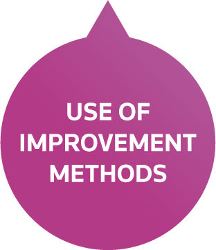 Use of Improvement Methods Petal