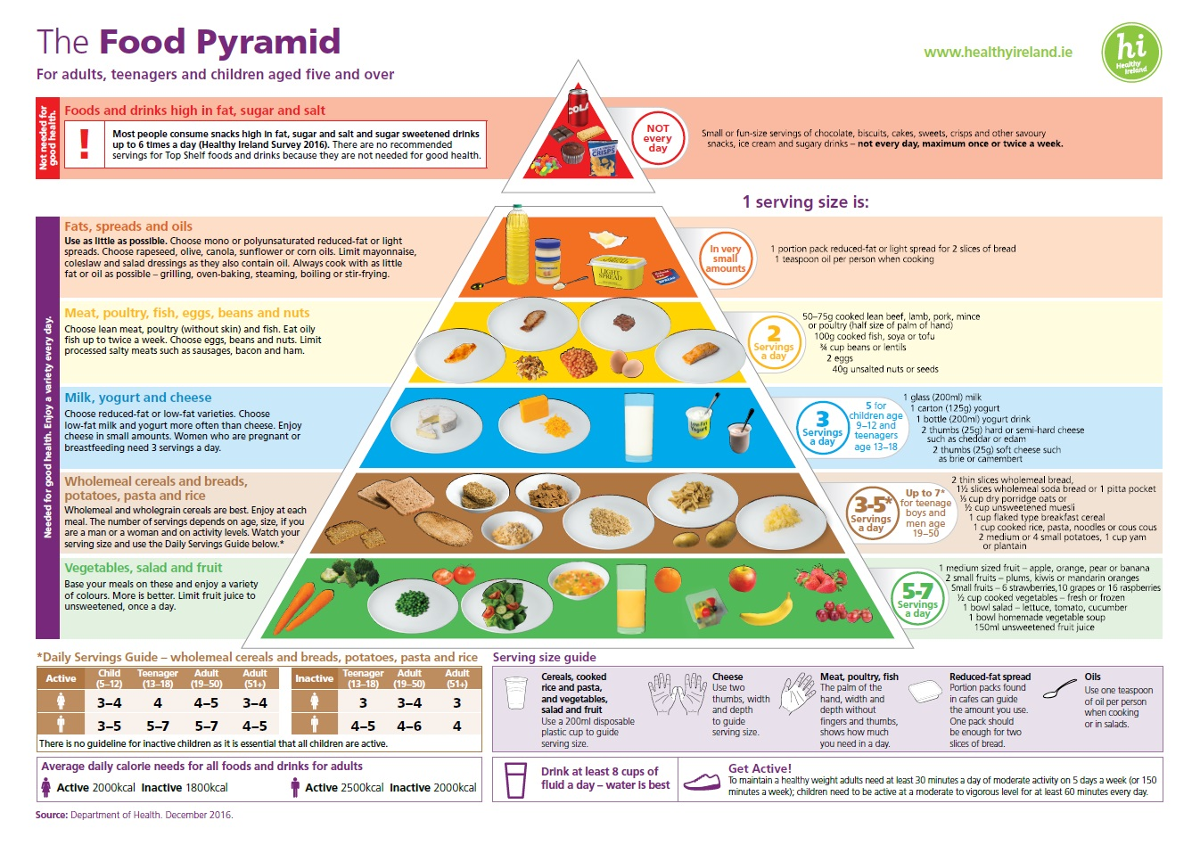 Food Pyramid Professional Version